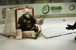inlinehockey germany